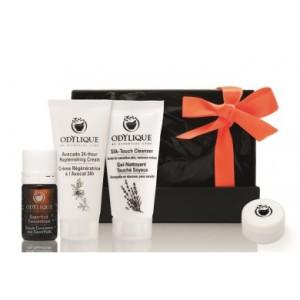 100-0075 giftbox_organic_web