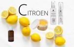 citroen 03-16*