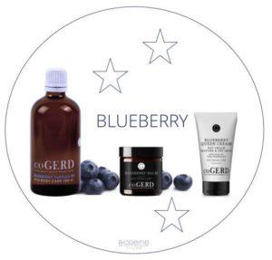 kerst-blueberry-cogerd-bioreine*